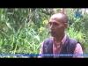 GCAECO - Giải pháp nông nghiệp thông minh 4.0
