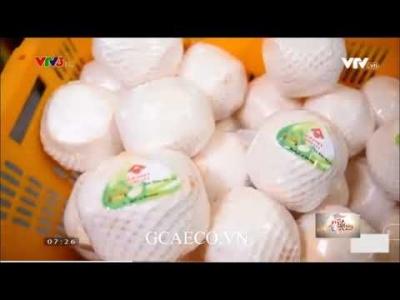 GCAECO - Trái cây Việt Nam đang từng bước chinh phục các thị trường khó tính