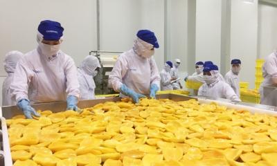 Cú hích cho chế biến rau quả xuất khẩu
