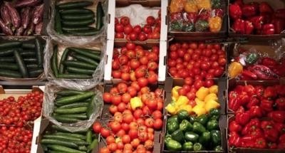 Nhà đầu tư hứng thú hơn với nông nghiệp hữu cơ