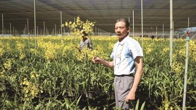 Tiếp sức sáng tạo cho ngành nông nghiệp: Hiện trạng manh mún