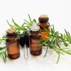 Tinh dầu Bạch Đàn Chanh - Nguyên chất - Lemon Eucaylyplus essential oil(10ml)