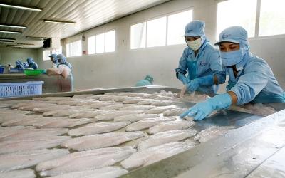 Nhiều giải pháp khơi thông tiêu thụ và xuất khẩu nông sản
