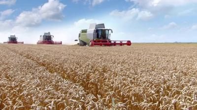 Nông nghiệp hữu cơ đang phát triển mạnh tại Bỉ