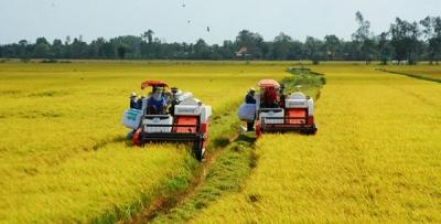 Nông nghiệp cần chuyển từ tư duy sản xuất đơn thuần sang làm kinh tế