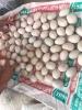 Trứng Vịt Ngon