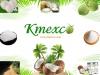 KMEXCO - NÔNG SẢN DỪA BẾN TRE