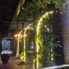 Lườn Ngỗng Áp Chảo - Độc Quán