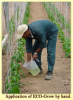 Phân bón hữu cơ Eco-Flora - Sản phẩm thân thiện với môi trường đến từ New Zealand