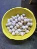 Trứng Gà So Sạch Giống Gà Lạc Thủy