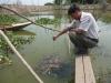 Cá Chạch Sụn - Ninh Bình