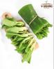 Rau cải chíp hữu cơ V-Organic