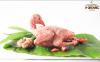 Chim câu V-Organic