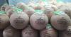 Dừa Nắp Khoen V-Organic
