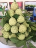Na Dai Chi Lăng Loại 1 (2-3 quả/kg)  - HTX Nông Nghiệp Chi Lăng