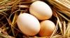 Trứng Gà Mía (Gà Mía Ông Tâm)