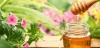 Mật Ong Rừng Nguyên Chất - Đặc Sản Hoàng Lâm