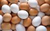 Trứng Gà Đỏ