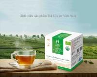 Hộp Trà xanh Hương Nhài Hữu cơ Tam đường (túi lọc)