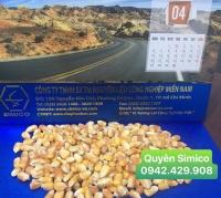 Bắp hạt nhập khẩu giá tốt