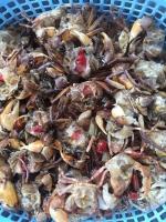 cá biển nấu canh