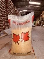 Đậu nành Canada GMO