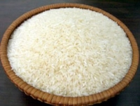 Gạo Miền Tây - Đồng Tháp