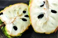Na Dai Chi Lăng Loại 2 - (4-5 quả/kg)  - HTX Nông Nghiệp Chi Lăng